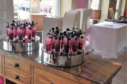 Stradey Park Hotel wedding drinks