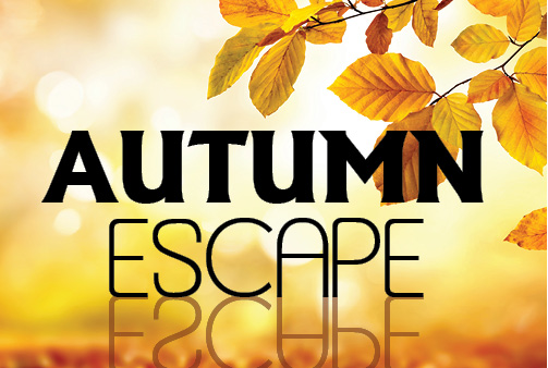 Autumn Escape